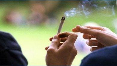 أرقام مفزعة: أكثر من 95 في المائة من تلاميذ الثانوي بدوار هيشر يتعاطون المخدرات  