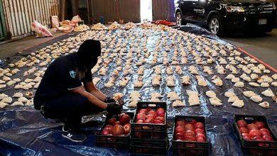 الإمارات: نؤيد قرار السعودية حظر منتجات لبنان الزراعية