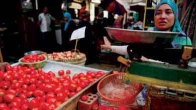 التضخم يرتفع في مصر بقيادة الطماطم