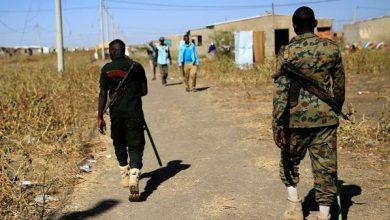 الجيش السوداني: سنحمي كل شبر من حدودنا المحررة