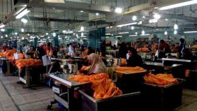القطاع الخاص المصري ينتعش بسبب التيسير النقدي واعتدال التضخم واستقرار الجنيه