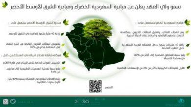 بصمة عالمية لـ«رؤية السعودية» بالمبادرة الخضراء