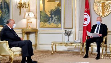 سعيد يستقبل وزير الخارجية المصري ويتسلم رسالة من السيسي |