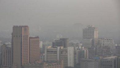 ضباب سام يخنق نيودلهي بعدما وصف ترمب هواء الهند بـ«المثير للاشمئزاز»