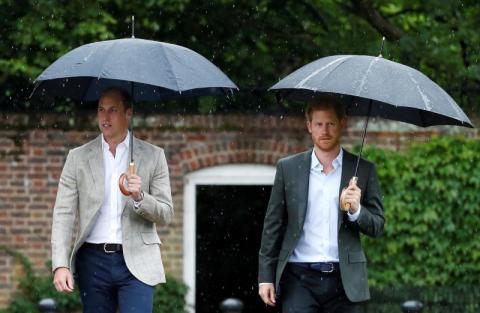 كاتب: الأميران هاري وويليام لم يتحدثا لمدة شهرين بعد الانفصال الملكي