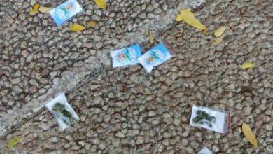 كيلوغرام يوميًا... السماء «تمطر» أكياس قنب في تل أبيب