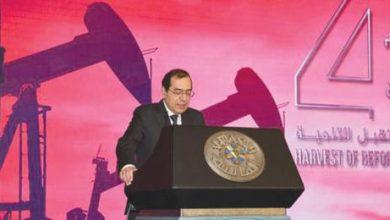 مصر: 90 % من تدفقات الاستثمار الأجنبي المباشر تذهب لقطاع الطاقة